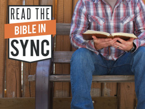 Bible-in-Sync-1024-768